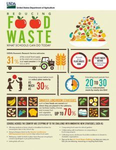 reducing food waste infographic example