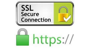 SSL connection image
